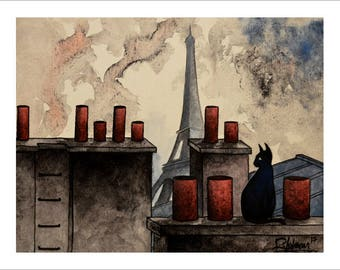 Sad cat on Paris roofs