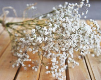 SALE A  bouquet of dried natural baby's breath bouquet , Wedding bouquet, dried flower bouquet, white gypsy, flower arrangement, gypsophilia