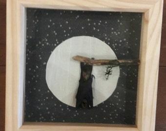 Taxidermy bat framed art