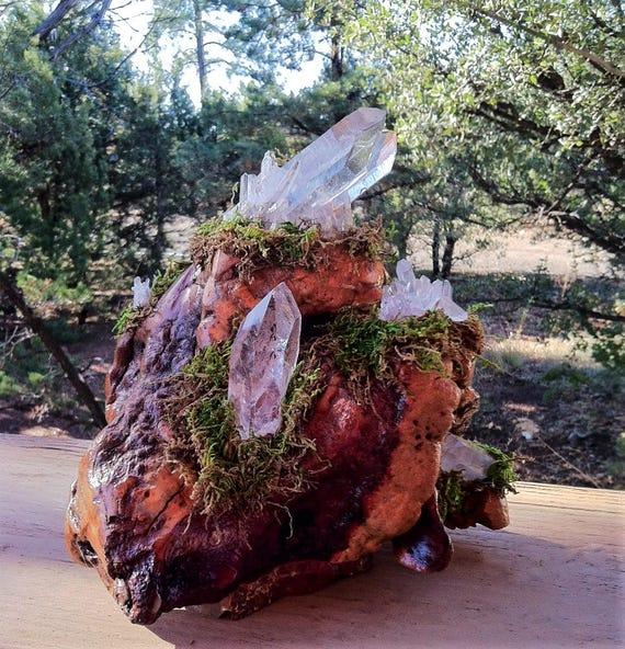 5 Clusters on Wood Meditation Garden, SOUL MATE, Lemurian CLUSTER on Burl Laser Wand, Rainbow Sedona & Reiki charged, Micro Garden, Display