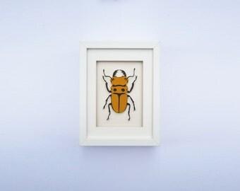 Paper Entomology – Single Beetle – Paper Art