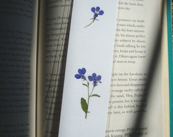 Pressed flower bookmark with blue Lobelia  flowers