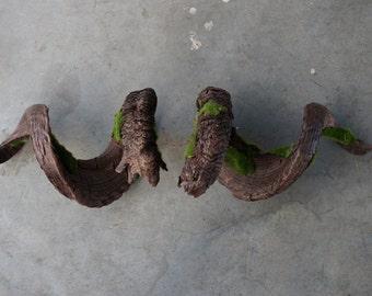 Ram Horns A