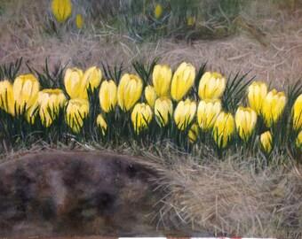 Yellow crocuses acrylic painting