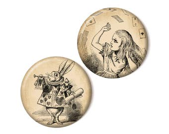 2 magnets, Alice and the white rabbit