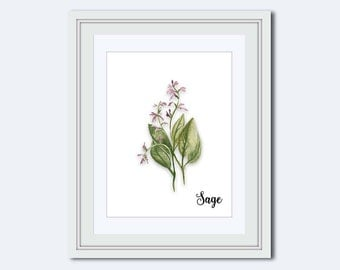Sage print - Sage printable - Kitchen printable - Spice print - art for kitchen - kitchen wall decor - kitchen wall art - Printable Art