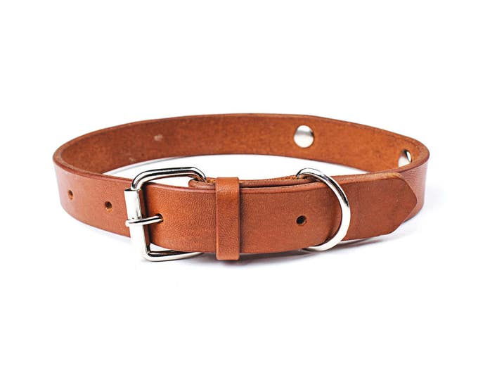 Personalized dog collar - brown leather dog collar - Custom dog collar - custom name dog collar - dog collar with name - stylish dog collar