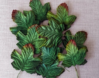 Velvet Leaves, 24 green tinged leaves.
