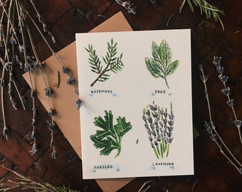 Garden Herbs Greeting Card - Rosemary - Sage - Parsley- Lavender A-2 Single Card
