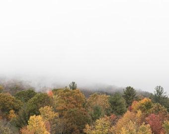 Blue Ridge Parkway - Foggy Fall Morning 4/4 - Horizontal