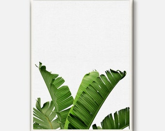Banana Leaf Print, Tropical Decor Plant, Botanical Art, Tropical Wall Art, Printable Art, Sage Green, Plant Photography, Green Leaves Decor