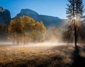 Awhanee Meadow Autumn Sun...