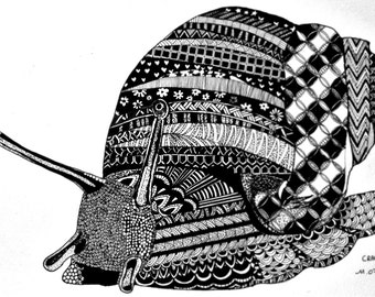 SNAIL (black ink illustration with neat details and patterns, print)