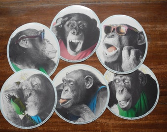 Monkey Chimpansee stickers