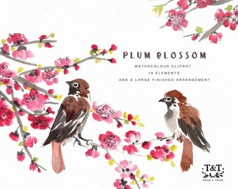 Flower Watercolour Clipart, Hand Painted Graphics - Plum Blossom
