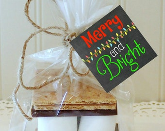 S'mores Kits, 12 S'mores Favor Kits, MERRY AND BRIGHT Christmas S'mores Kit, S'mores Favors, Christmas Favors, Holiday S'mores Party Favor