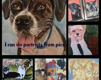 Let me paint your pets portrait!