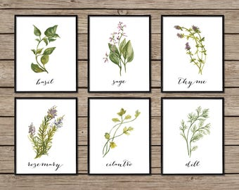 Herb Print Set, Botanical Print Set, Botanical Prints, Herb Prints, Botanical Wall Art, Herb Decor, Herb Printables, Botanical Decor