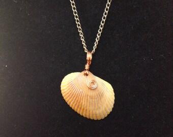Copper Wire Wrapped Seashell Pendant