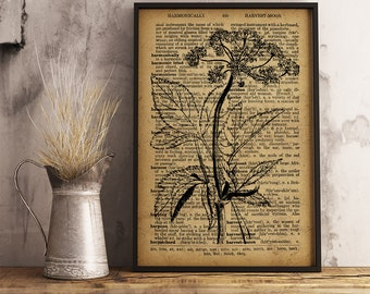Herb Art Print, Gout Weed Dictionary Art Print, Botanical Art Decor, Herb Wall Decor, Dictionary Art Poster, Nature Art print (F15)