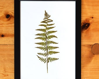 Pressed Fern Botanical Print A4 (Frame not included)