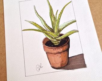 Drawing felt - Aloe vera
