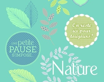 Transparent stamps - Stamp Set up - Clear buffer - buffer Nature - 10040039