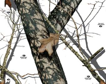 Mossy Oak Break-Up Winter Camo Vinyl Roll - Outdoor Adhesive Camo Vinyl Wrap - Vinyl Sheets by Mossy Oak Graphics