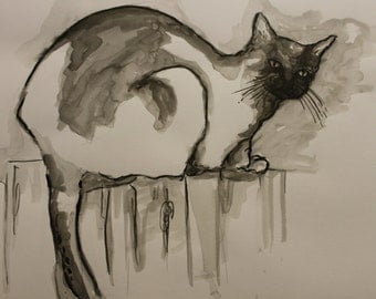 cat drwing in black and white, ink cat drawing, animal cat ink art