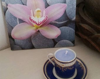 Cup and under Cup blue zen