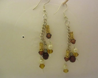 Dangling Multi Colored Earrings