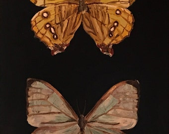Pearl Morpho Butterfly Sulkowski Front and Back Original Oil Painting