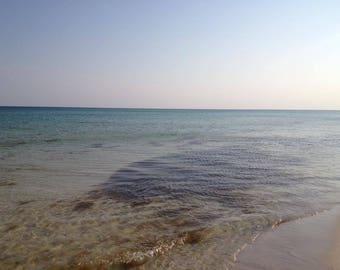 Pensacola Beach, FL and the coral reefs Print