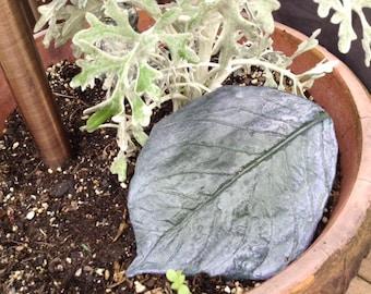Handmade concrete leaf casting of a hydrangea leaf