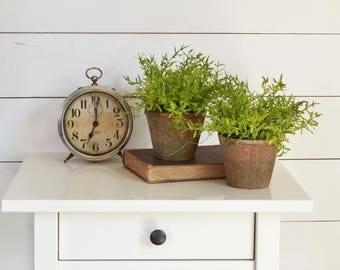 Rustic Pot of Greenery, Fern in Terracotta Pot, Farmhouse Greenery, Rustic Centerpiece, Farmhouse Decor, Garden Decor, Cottage Greenery