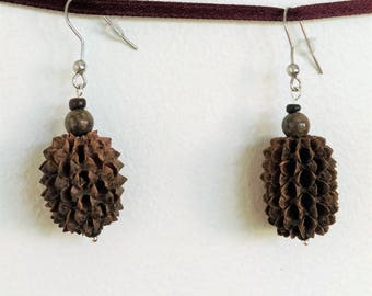 Natural Earrings: filao seed