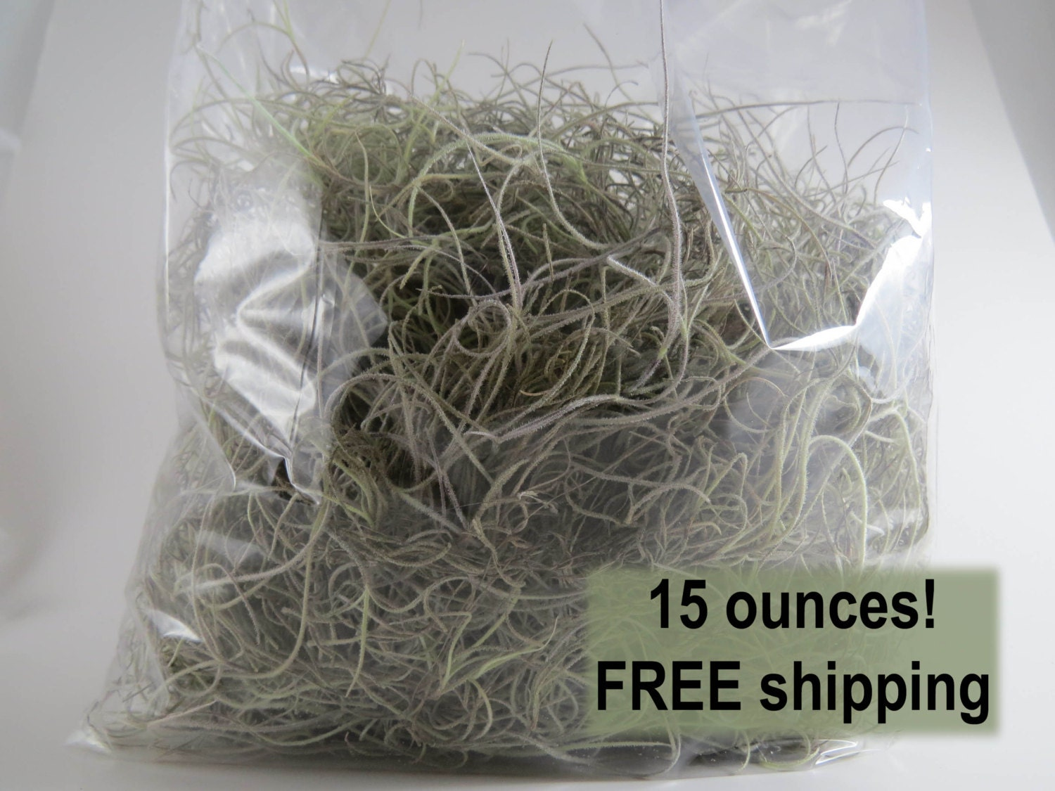 Spanish moss for crafts -  12 50