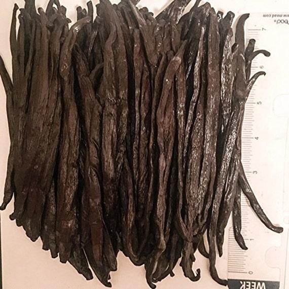 Bourbon Vanilla Beans, Vanilla Planifolia, Vanilla Products (Various sizes available)
