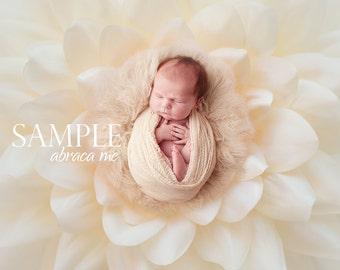 newborn digital background/flower newborn digital backdrop/instant download