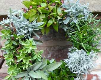 Knot-Garden Wreath, fresh, organic, real, christmas wreath, traditional front door wreath, made to order, oasis base