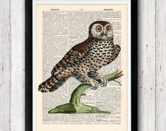 Owl Art Print / Bird Dictionary Art / Owl Wall Art Vintage Dictionary Page Book  Print / Office Art / Wall Art Prints / Wall Decor