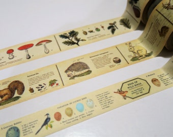 MT ex Vintage Encyclopedia Washi Tape Samples 300cm
