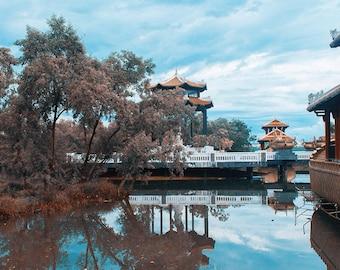 Zen garden, Vietnam