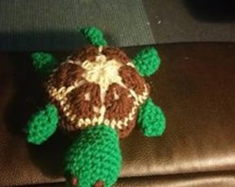 Cozy Turtle
