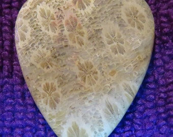 Indonesian Fossil Coral Gemstone Guitar Pick, Stone Guitar Pick. Fossil Coral
