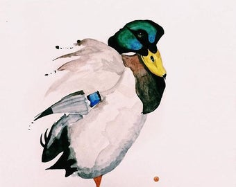 Mallard Watercolor