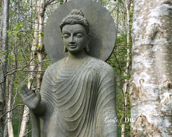 Digital Download - An Indian Buddhist Sculpture through trees