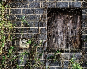 """House Nature Art Print entitled """"The Abandoned"""". Wall Decor, Photography, 3 of 3"""