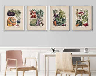 Framed botanical prints set, French vegetables kitchen art,  Botanical illustration, Vegetables poster, Vintage botanical art, Framed art