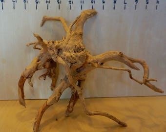 Branch Wood, Japanese Rose Wood, Driftwood, Root Wood, Spider Wood